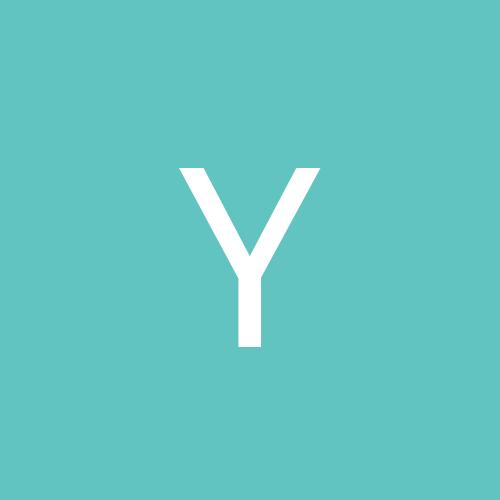 yoav11
